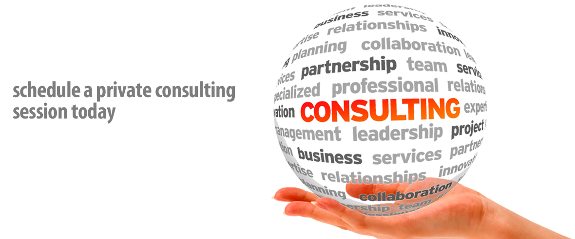 one on one protocol and etiquette consulting
